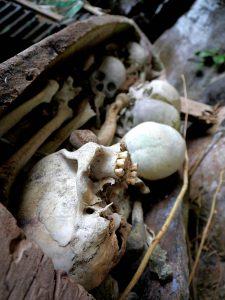 Totenkult in Tanah Toraja, Sulawesi