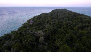 Der Jungle auf Chumbe Island vom Leuchtturm aus